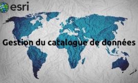 Formation ArcGIS : Gestion du catalogue de données (ArcCatalog)